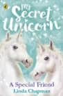 My Secret Unicorn: A Special Friend - Book