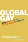 Global Gay : How Gay Culture Is Changing the World