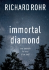 Immortal Diamond : The Search for Our True Self - Book