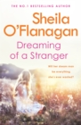 Dreaming of a Stranger : An unputdownable novel of hopes and dreams... and love - Book