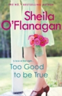 Too Good To Be True : A feel-good read of romance and adventure - eBook