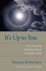 It's Up to You : The Practice of Self-Reflection on the Buddhist Path