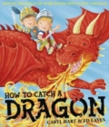 How To Catch a Dragon - Book