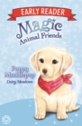 Magic Animal Friends Early Reader: Poppy Muddlepup : Book 5