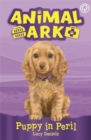 Animal Ark, New 4: Puppy in Peril : Book 4