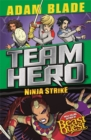 Team Hero: Ninja Strike : Series 4 Book 2