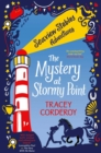 The Mystery at Stormy Point - Book