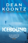 Icebound : A chilling thriller of a race against time