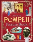 Pompeii Picture Book - Book