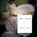 Amy Snow : A Novel