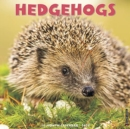 Hedgehogs 2020 Wall Calendar