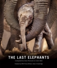 The Last Elephants - eBook