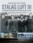 Stalag Luft III : Rare Photographs from Wartime Archives