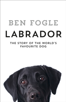 Labrador : The Story of the World's Favourite Dog, Hardback Book