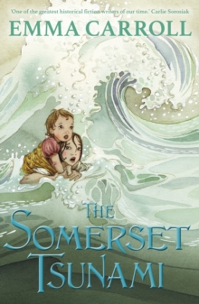 The Somerset Tsunami, Paperback / softback Book