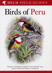 Birds of Peru, Paperback / softback Book