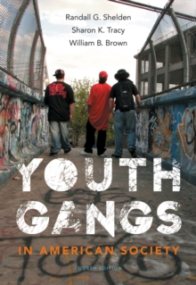 Youth Gangs in American Society, Paperback / softback Book