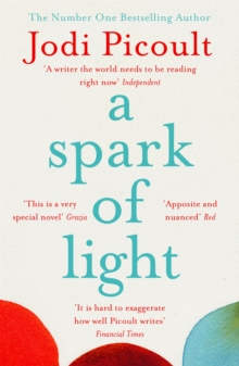 A Spark of Light : THE NUMBER ONE SUNDAY TIMES BESTSELLER, Paperback / softback Book