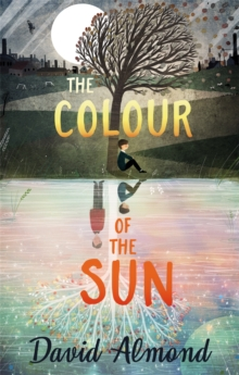 The Colour of the Sun, Paperback / softback Book