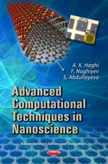Advanced Computational Techniques in Nanoscience, Paperback / softback Book