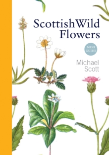 Scottish Wild Flowers : Mini Guide, Paperback / softback Book