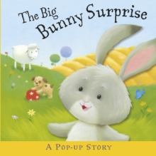 The Big Bunny Surprise, Hardback Book