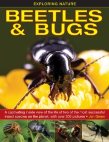 Exploring Nature: Beetles & Bugs, Hardback Book